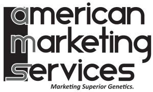 AMS_Logo_BW