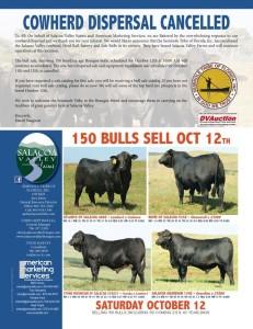 SVF Bulls