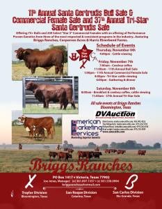 Briggs Santa Gertrudis Bulls & Comm. Females