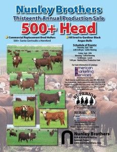 "Nunley Brothers ""One Ranch Raised"" Commercial Bred Heifer Sale"