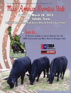"Texas Brangus Breeders ""Miss America Sale"""