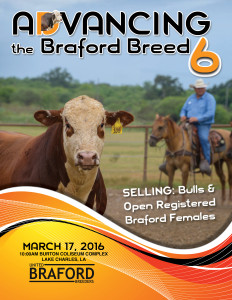 Adv Braford Sale 6_Cover_Spring 2016-web