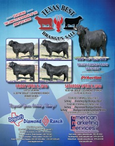 DDD Texas Best Sale - 2016.03 BJ-RGB