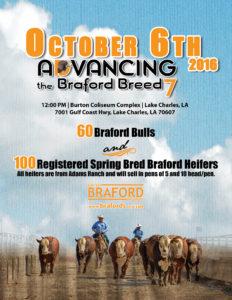adv-braford-7_cover_fall-2016-web