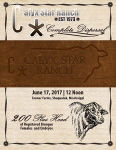 Calyx Star_Cover_06 2017-web