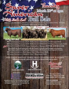 Super Am Bull Sale_GA Cattleman_02 2018-RGB