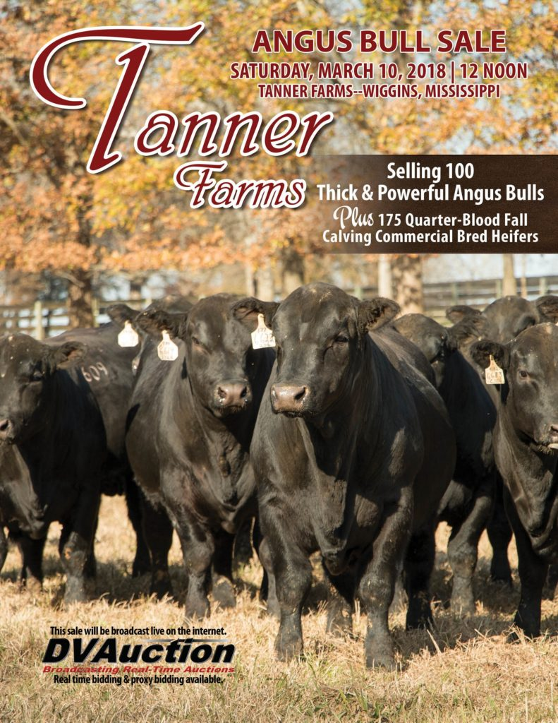 Tanner Farms Angus Bull Sale & Quarter Blood Commercial Bred Heifer Sale