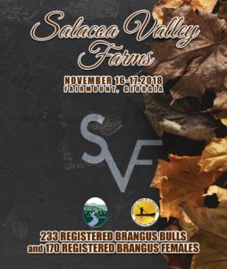 SVF_Cover_Fall 2018-web REV